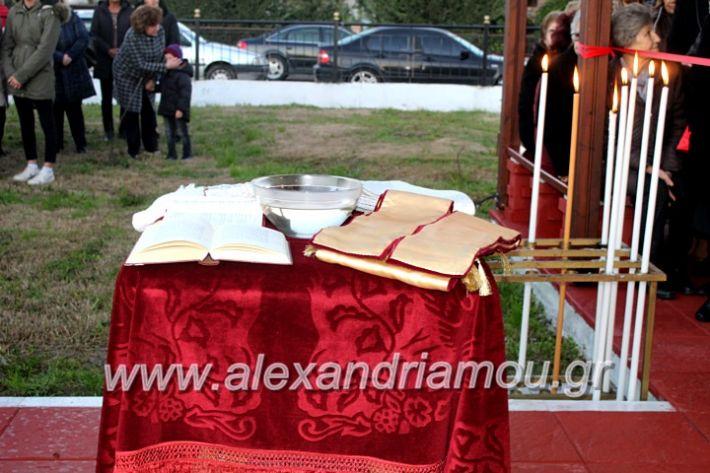 alexandriamou.gr_thiraniksiaagioufaniouriou2019IMG_0814