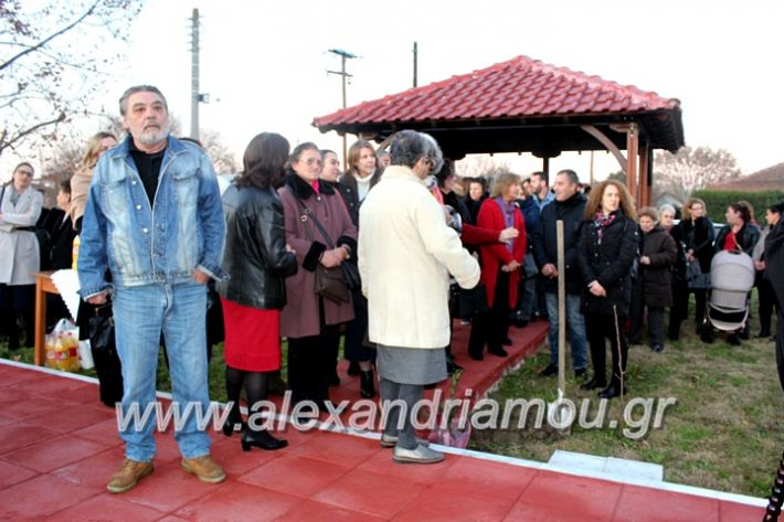alexandriamou.gr_thiraniksiaagioufaniouriou2019IMG_0817