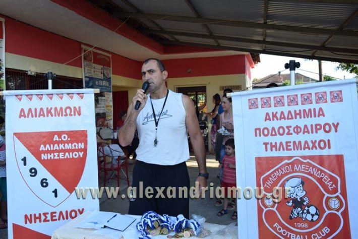 alexandriamou_tulemaxi177090