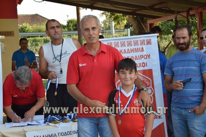 alexandriamou_tulemaxi177095