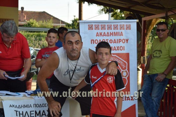 alexandriamou_tulemaxi177101