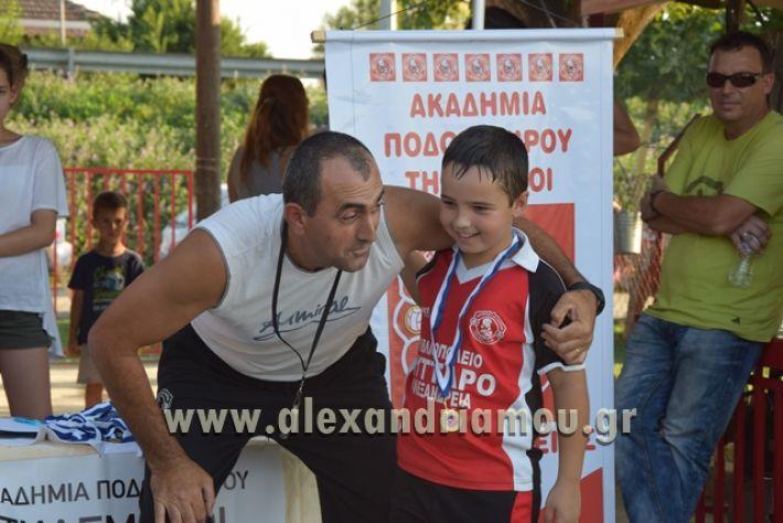 alexandriamou_tulemaxi177109