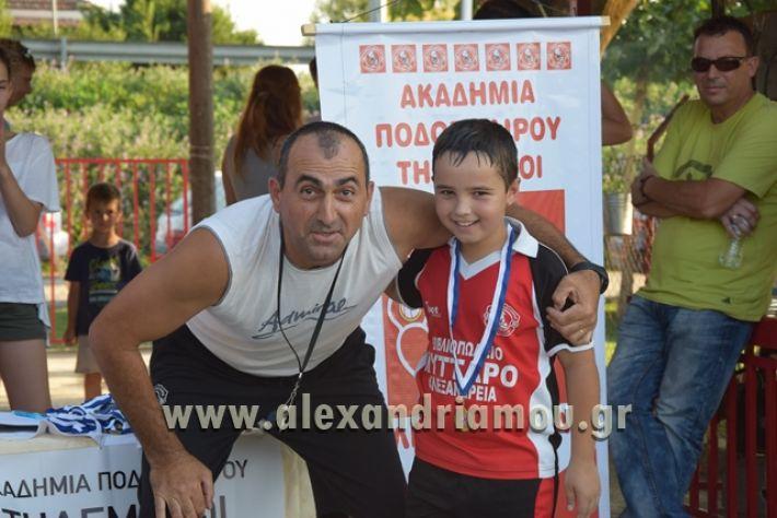 alexandriamou_tulemaxi177110