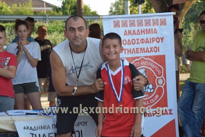 alexandriamou_tulemaxi177111