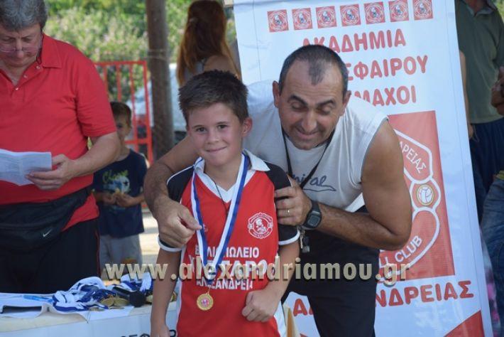 alexandriamou_tulemaxi177115