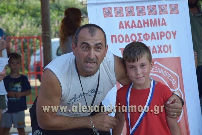 alexandriamou_tulemaxi177118