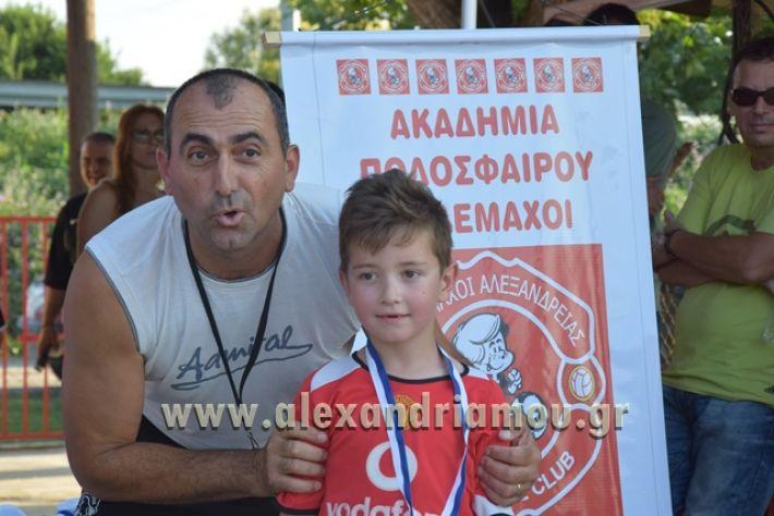 alexandriamou_tulemaxi177122