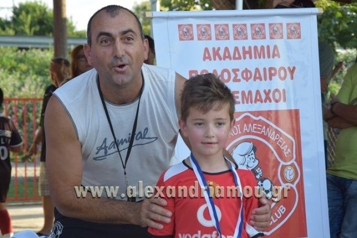 alexandriamou_tulemaxi177124