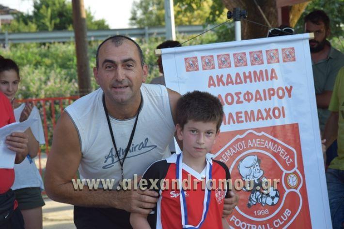 alexandriamou_tulemaxi177126