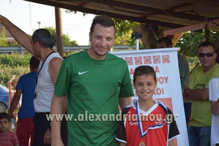 alexandriamou_tulemaxi177135