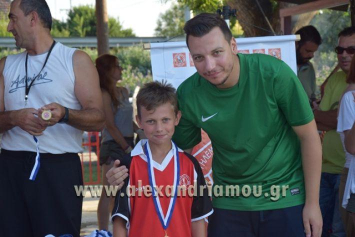 alexandriamou_tulemaxi177139