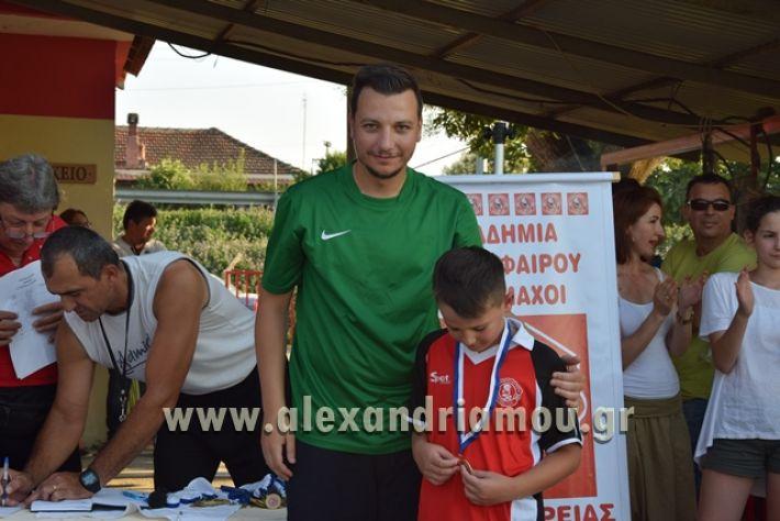 alexandriamou_tulemaxi177148