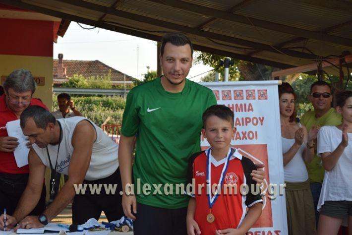 alexandriamou_tulemaxi177149