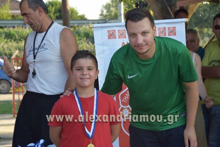alexandriamou_tulemaxi177150