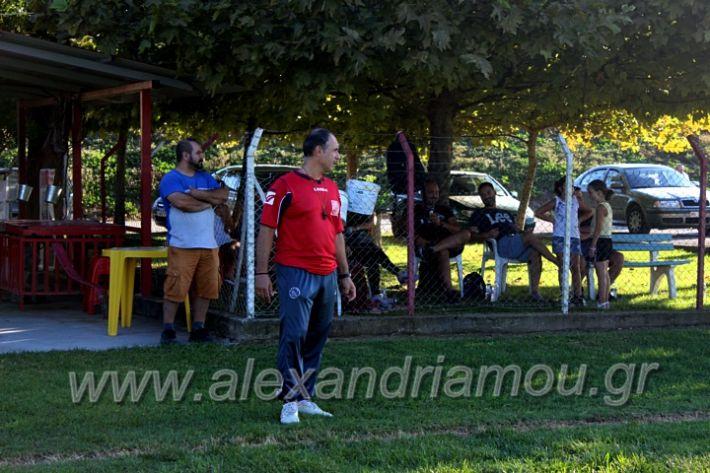 alexandriamou.gr_tilemaxoiproetoimasia2020IMG_9889
