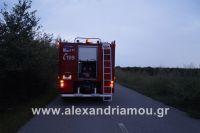 alexandriamou_amfitheatro18.090003