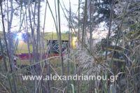 alexandriamou_amfitheatro18.090010