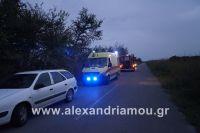 alexandriamou_amfitheatro18.090012