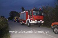 alexandriamou_amfitheatro18.090015