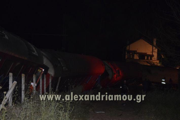 alexandriamou_treno_adendro002