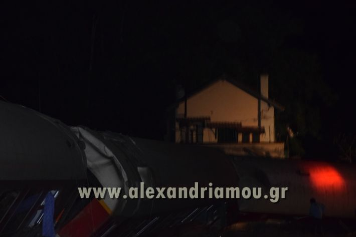 alexandriamou_treno_adendro004