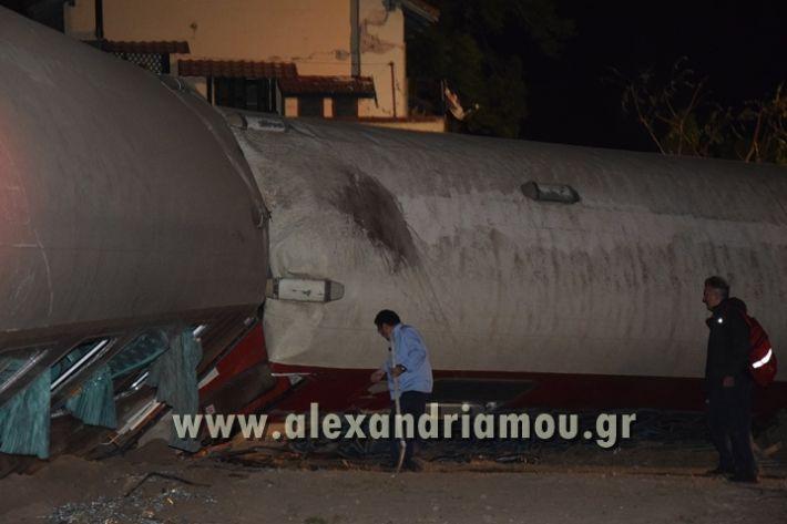 alexandriamou_treno_adendro008