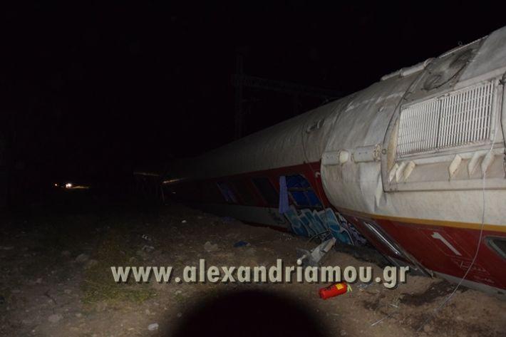 alexandriamou_treno_adendro009