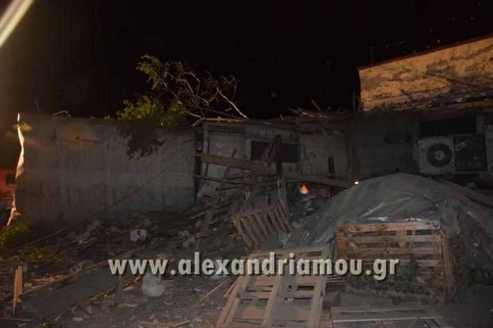 alexandriamou_treno_adendro034