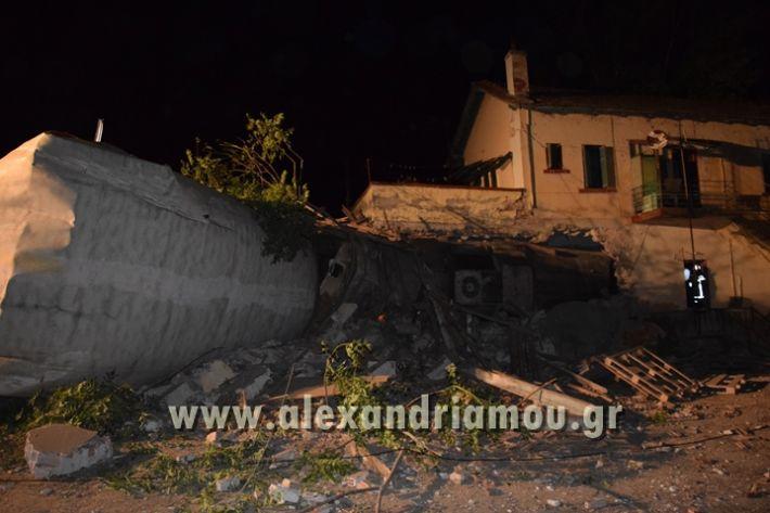 alexandriamou_treno_adendro037