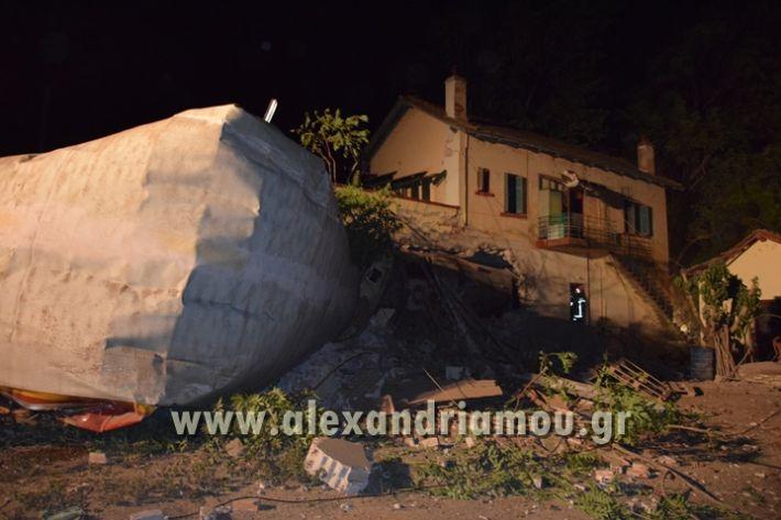 alexandriamou_treno_adendro039