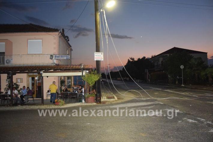 alexandriamou.gr_trikala2222DSC_0333