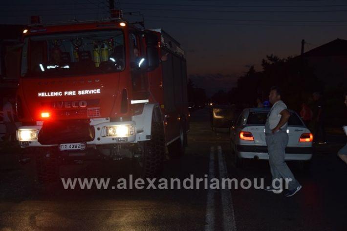 alexandriamou.gr_trikala2222DSC_0339