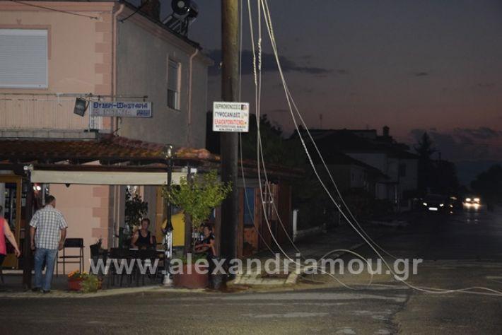 alexandriamou.gr_trikala2222DSC_0340