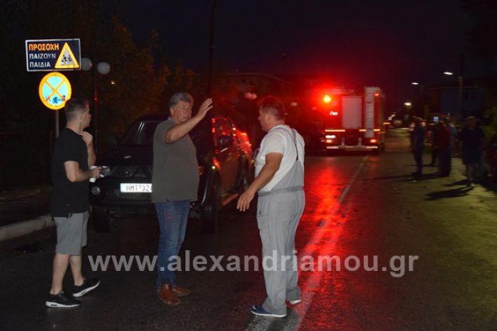 alexandriamou.gr_trikala2222DSC_0341