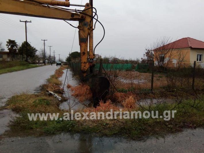www.alexandriamou.gr_trikala1230992078766_2845027895618245_4938839346720538624_n