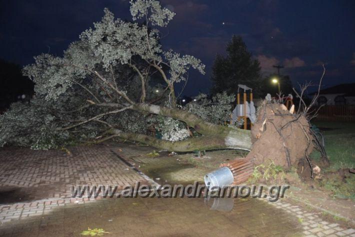 alexandriamou.gr_trikala_katastrofes002