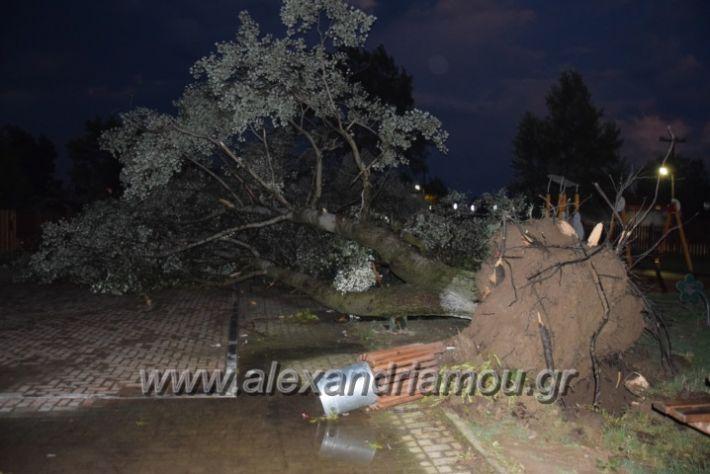 alexandriamou.gr_trikala_katastrofes003