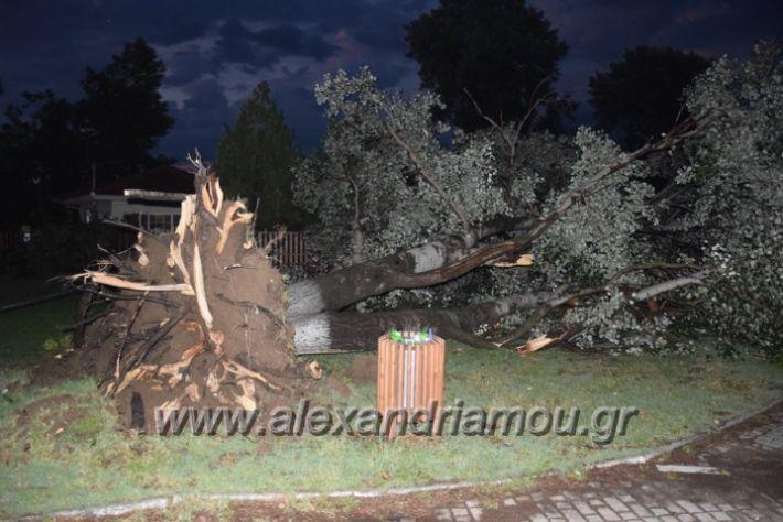 alexandriamou.gr_trikala_katastrofes004