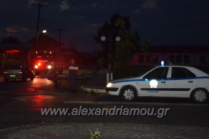 alexandriamou.gr_trikala_katastrofes007