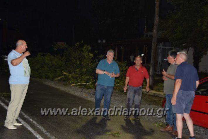 alexandriamou.gr_trikala_katastrofes011