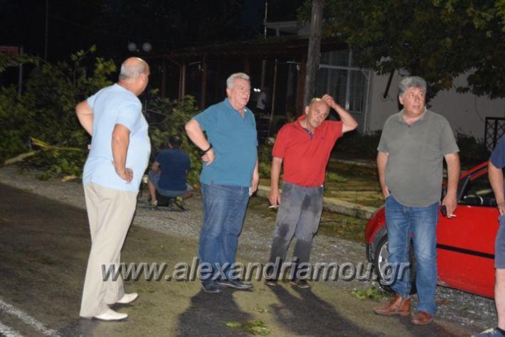 alexandriamou.gr_trikala_katastrofes012