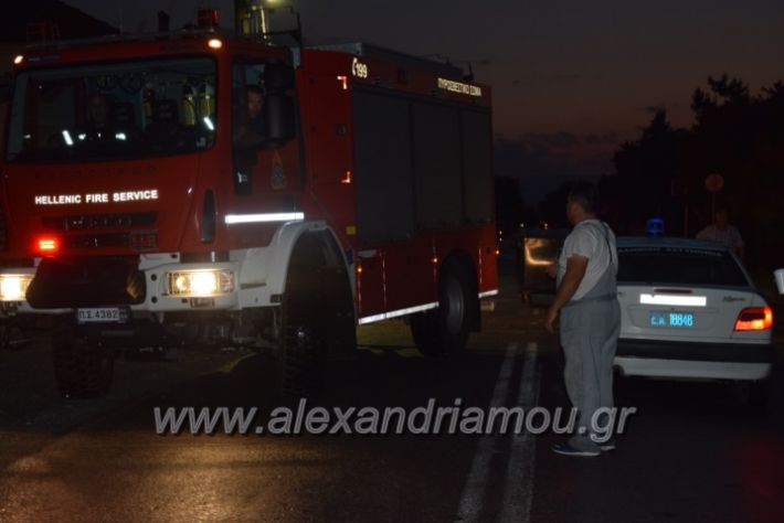 alexandriamou.gr_trikala_katastrofes013
