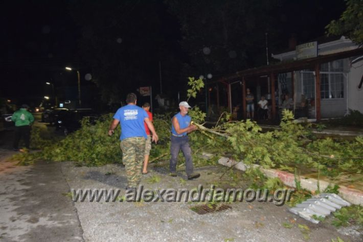 alexandriamou.gr_trikala_katastrofes032