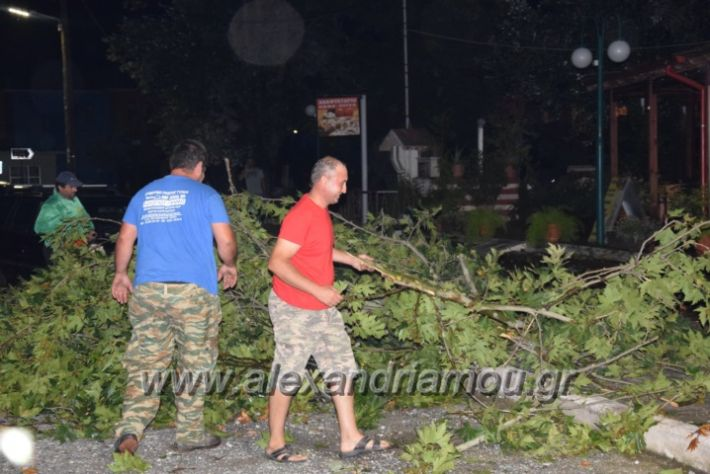 alexandriamou.gr_trikala_katastrofes033