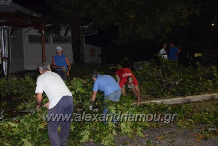 alexandriamou.gr_trikala_katastrofes037