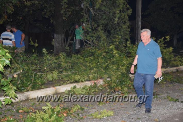 alexandriamou.gr_trikala_katastrofes038