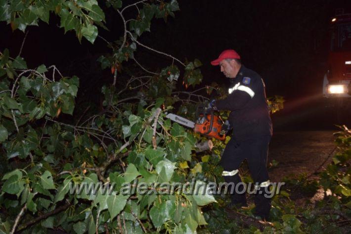 alexandriamou.gr_trikala_katastrofes054