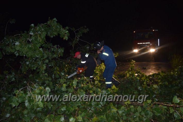 alexandriamou.gr_trikala_katastrofes058