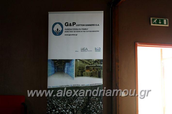alexandriamou.gr_imeridatrikala20IMG_2441