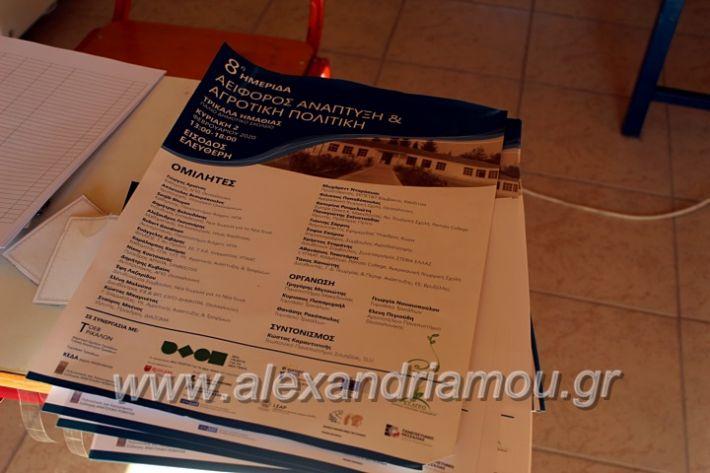 alexandriamou.gr_imeridatrikala20IMG_2443
